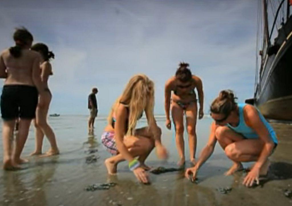 Plezier in zilt zand naast drooggevallen klipper